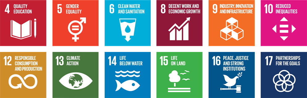 Shift Sight's focus on 12 UN SDGs.